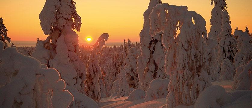 finland_lapland_winter-scenery-ylla-s-mauri.jpg